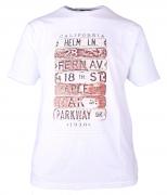 T-shirt manches Courtes blanc de 3XL à 8XL