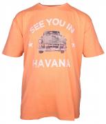 T-shirt manches courtes mélange de orange 3XL à 8XL